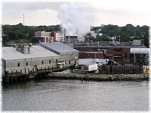 Kingsville Fisherman's Company